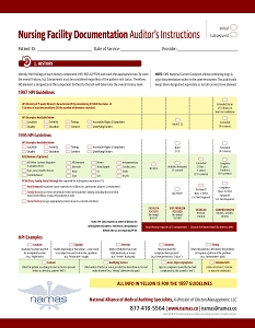 Nursing Facility Audit Tool
