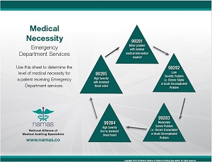 Medical Necessity Leveling Charts: Emergency Department Services