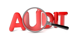 Various Types of Audits - Webinar - Presented by Michael Miscoe